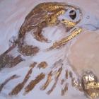 Calidus 24 Karat 15 x 15 cm