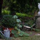Gerfalkenskulptur 55 cm